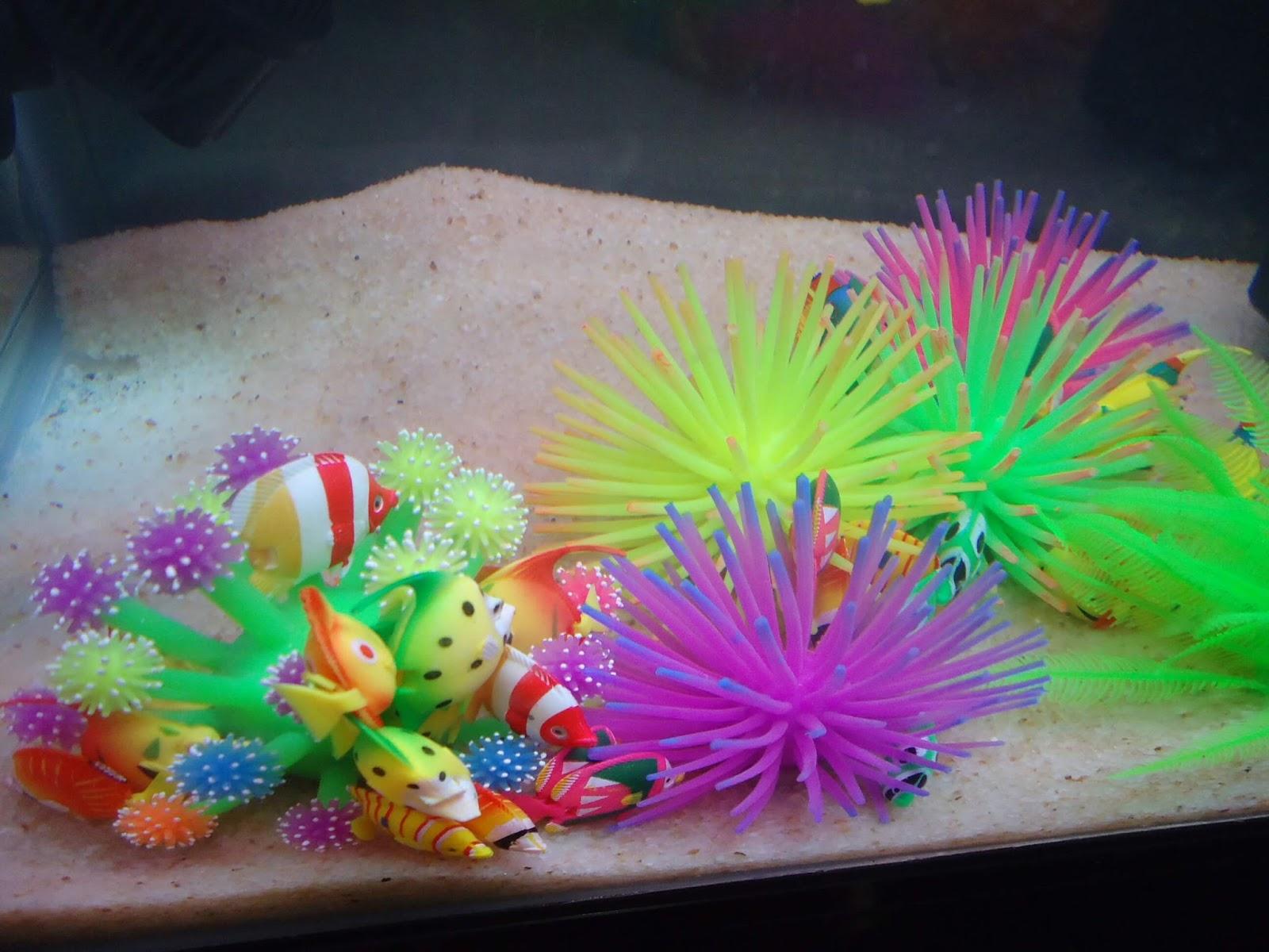 Saltwater Aquarium Decorations Brightening Up Your Marine ...
